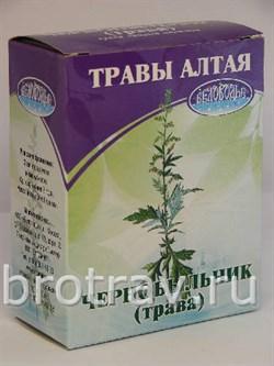 чернобыльник, трава 50гр - фото 4320