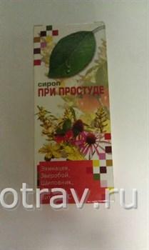 При простуде сироп с экстрактом эхинацеи,зверобоя,шиповника, солодкой, витамином С 100мл. - фото 4914